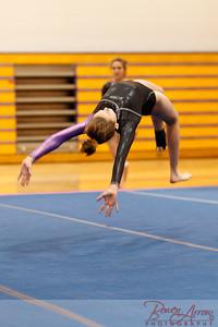 Gymnastivs vs Lakeland 20150302-0188