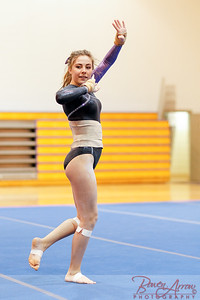 Gymnastivs vs Lakeland 20150302-0254