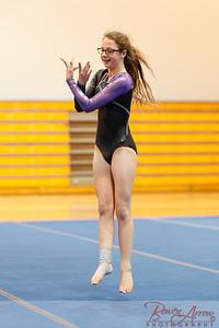 Gymnastivs vs Lakeland 20150302-0158