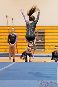 Gymnastivs vs Lakeland 20150302-0148