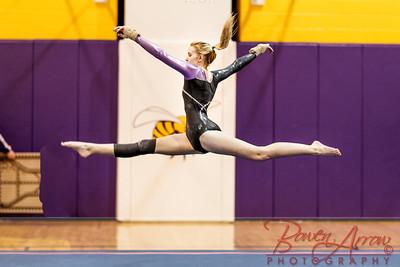 Gymnastivs vs Lakeland 20150302-0807