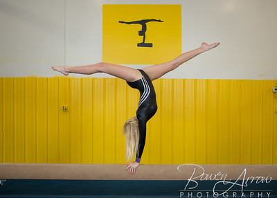 Gymnastics Team 2015-0079