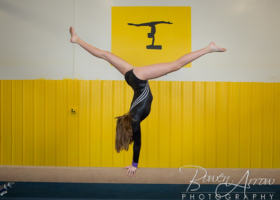 Gymnastics Team 2015-0074