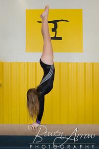 Gymnastics Team 2015-0083