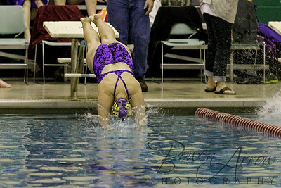 Swim at Concordia 20141215-0047