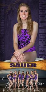 01 Sauer Banner