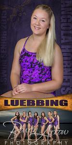 01 Luebbing Banner