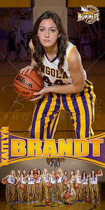 Kaitlyn Brandt Banner 02
