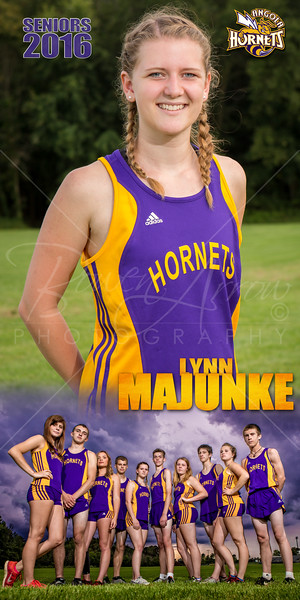 Lynn Majunke Banner