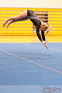 Gymnastics vs Coldwater 20160222-0820