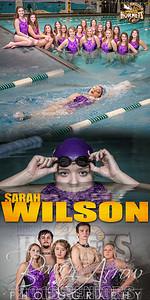Sara Wilson Banner 01