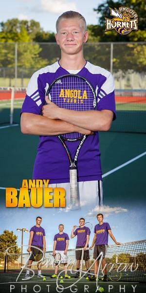 Andy Bauer Banner