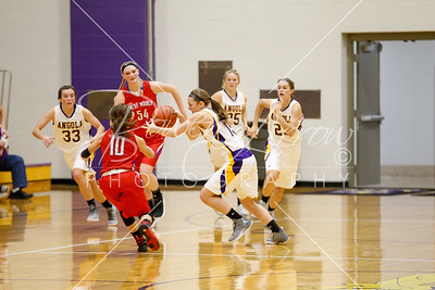 WBB vs WN 20161119-0008