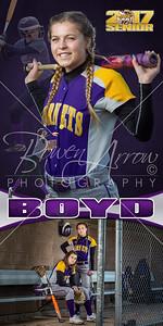 Sydney Boyd Softball Banner 01