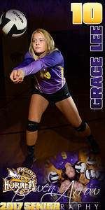 Grace Lee VB Banner
