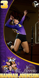 Hannah Johnson 02 VB Banner