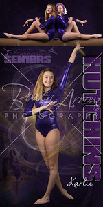 Gymnastic Karlie Hutchins Banner