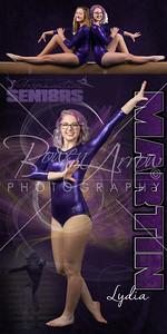 Gymnastic Lydia Martin Banner