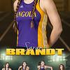 Sarah Brandt Track Banner
