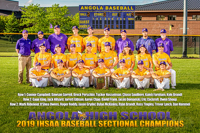 2019 Baseball Sectional Photo
