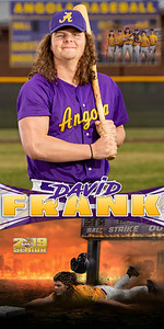David Frank Baseball Banner