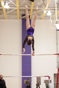 Gymnastics vs Wawasee 20190108-0054