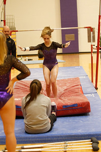 Gymnastics vs Wawasee 20190108-0018