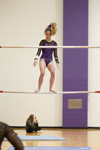 Gymnastics vs Wawasee 20190108-0015