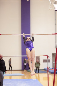 Gymnastics vs Wawasee 20190108-0052