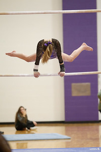 Gymnastics vs Wawasee 20190108-0009