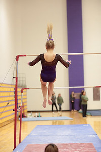 Gymnastics vs Wawasee 20190108-0043