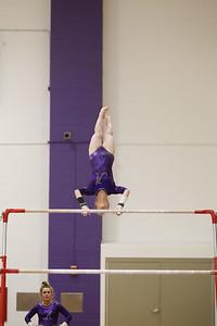 Gymnastics vs Lakeland 20190207-0061