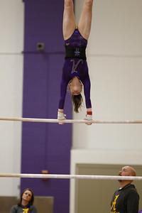 Gymnastics vs Lakeland 20190207-0078