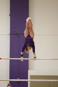 Gymnastics vs Lakeland 20190207-0059