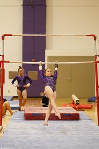Gymnastics vs Lakeland 20190207-0056