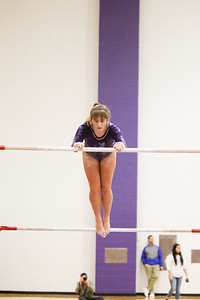 Gymnastics vs Lakeland 20190207-0017