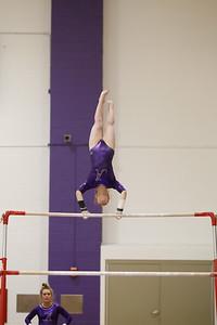 Gymnastics vs Lakeland 20190207-0062