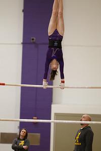 Gymnastics vs Lakeland 20190207-0080