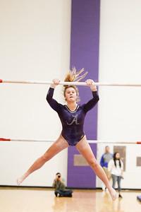 Gymnastics vs Lakeland 20190207-0007
