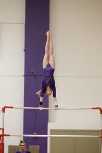 Gymnastics vs Lakeland 20190207-0070