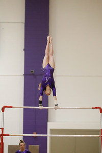Gymnastics vs Lakeland 20190207-0069