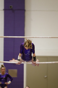 Gymnastics vs Lakeland 20190207-0054