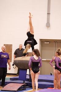 Gymnastcs vs Dekalb 20190213-0071