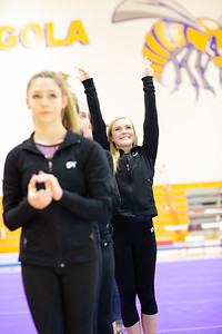 Gymnastcs vs Dekalb 20190213-0026