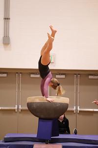 Gymnastcs vs Dekalb 20190213-0065