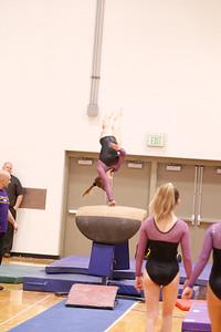 Gymnastcs vs Dekalb 20190213-0054