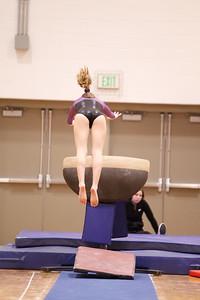 Gymnastcs vs Dekalb 20190213-0056