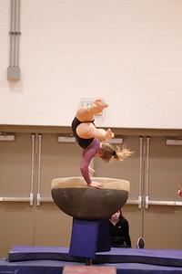 Gymnastcs vs Dekalb 20190213-0064