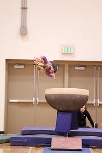 Gymnastcs vs Dekalb 20190213-0061