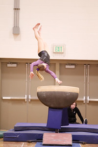 Gymnastcs vs Dekalb 20190213-0060